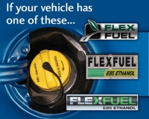 Flex fuel picture
